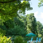 Our pool is secluded in a sunny area surrounded by trees.