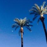 Homewood Suites by Hilton La Quinta Foto