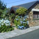 Wild Flower Cottage