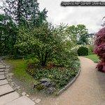 Photo of Japanischer Garten