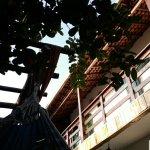 Bossa Nova Hostel Foto
