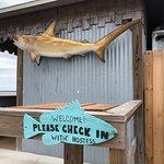 Foto de Goodrich's Seafood
