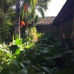 The Garden Cafe Foto