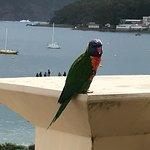 Foto de Ramada Resort Shoal Bay