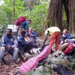 Bild från Mount Cameroon