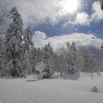 Bilde fra Furano Snow Tours