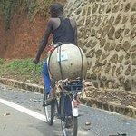 Billede af Wildlife Tours Rwanda