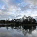 Some stunning photos of Painshill Park