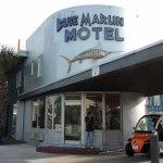 Blue Marlin Motel Picture