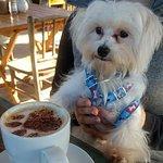 Foto de Cafe & Prosa