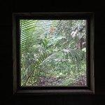 Photo of Palmar Beach Lodge