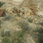 Photo of Castle of Lorca