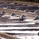 Typical scene from the island - these are the lakes where salt is farmed