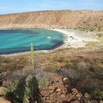 Photo of Baja Outdoor Activities (BOA)