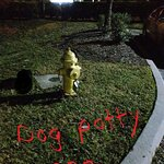 Doggie potty area with real fire hydrant!