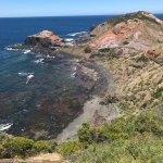 Cape Schanck Boardwalk의 사진