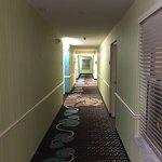 Foto de Hampton Inn and Suites Bayside Venice