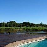 Photo of Sabie River Bush Lodge
