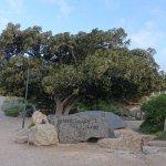Photo of Granite Island