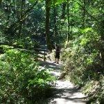 Foto van Bridal Veil Falls State Park