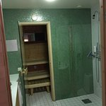 Apartment private sauna as part of bathroom