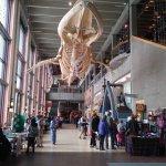 Фотография Grand Rapids Public Museum