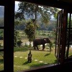 Rimvang Guesthouse의 사진