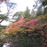 Photo de Tenjuan Garden
