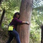 Hugging a native tree