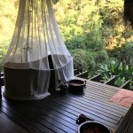 Four Seasons Tented Camp Golden Triangle Foto