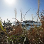 小動神社から見る江の島と海