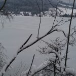 Frozen lake in Walchsee - cold day but just beautiful!