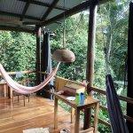 La Loma Jungle Lodge and Chocolate Farm照片