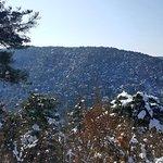 Photo de Gochang, Hwasun, and Ganghwa Dolmen Sites