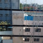 Bird droppings on the windows