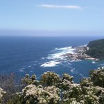 Foto de Garden Route (Tsitsikamma, Knysna, Wilderness) National Park