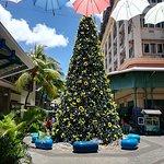 Фотография Khao Sok Paradise Resort