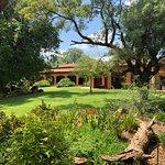 The Bush House Foto