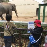 Photo of Kobe City Oji Zoo