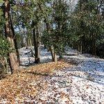 ところどころ雪が少し積もっていました