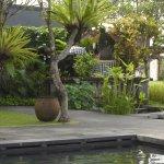 Alaya Resort Ubud Photo