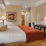 This new look of guest room with king bed has decorative top sheets, pillows & throw and include