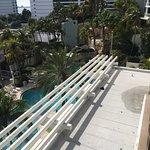 Foto de Hyatt Regency Sarasota