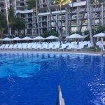 Beautiful salt water pool, patio and lawn