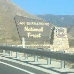 San Bernardino National Forest Foto