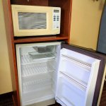 Old, but serviceable fridge and microwave.