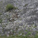 Photo of Zakimi Castle Ruins