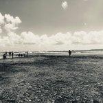Tidal pool beach walk