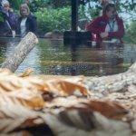 Crocodiles hidden in the Butterfly House