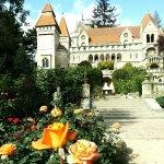 Photo of Bory Castle